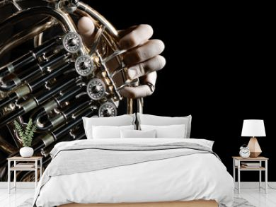 French horn instrument. Hands playing horn player
