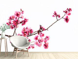 Vibrant Pink cherry blossom or sakura