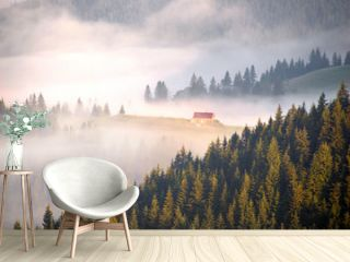 picturesque house in the fog