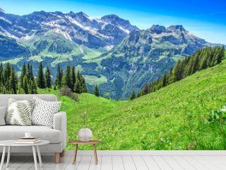 Swiss alps in the summer season. Panorama of the picturesque mountain, alpine landscape. Resort Engelberg, Switzerland