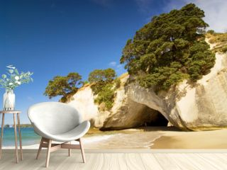 Cathedral Cove at Coromandel Peninsula, North Island, New Zealand.
