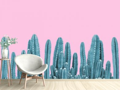 Green cactus on pink background
