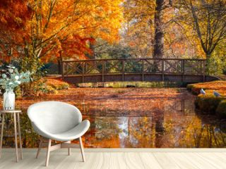 Wooden bridge in bushy park with autumn scene