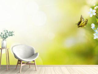 Wunderschöner Schmetterling