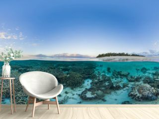 Island with coral reef