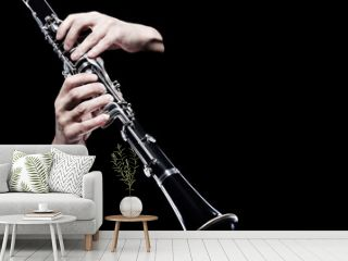 Clarinet player hands isolated