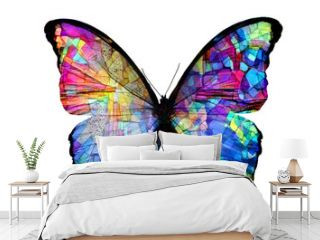 multicolored butterfly isolated on white background