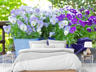 Purple, blue and violet pansy flowers in 3 pots and an enameled jug on a wooden balcony table in spring, background template