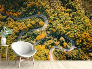 Road seen from above. Aerial view of an extreme winding curved road in the middle of the forest