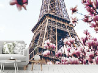 Blossoming magnolia against the background of the Eiffel Tower