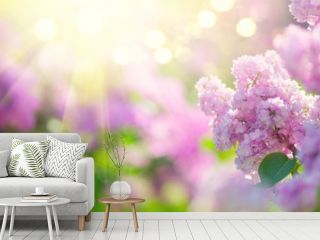 Lilac spring flowers bunch violet art design background. Blooming violet lilac flowers in a garden