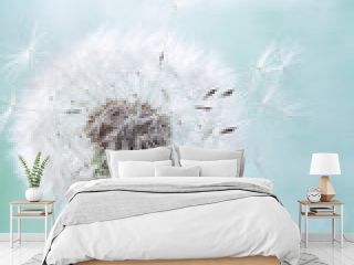 Single dandelion flower with flying feathers on light background. Beautiful nature poster.