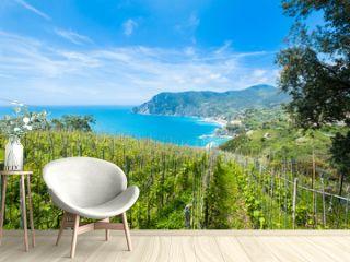 Weingut bei Cinque Terre 2