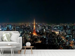 The most beautiful Viewpoint Tokyo tower in tokyo city ,japan.