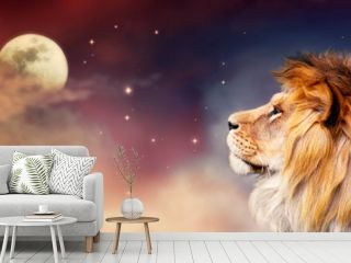 African lion and moon night in Africa banner. African savannah landscape theme, king of animals. Spectacular dramatic starry cloudy sky. Proud dreaming fantasy lion in savanna looking forward.