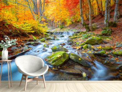 Autumn landscape -  river waterfall in colorful autumn forest park with yellow red  leaves