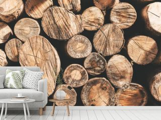 Moody shot of stack of logs putted as a wall.