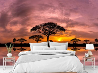 Panorama silhouette tree and Mountain with sunset.Tree silhouetted against a setting sun reflection on water.Typical african sunset with acacia trees in Masai Mara, Kenya.