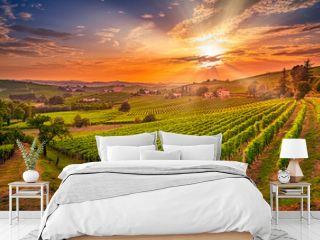 Spectacular wide angle view of Italian vineyards across the rolling hills at sunset
