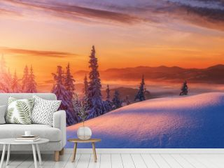 Amazing sunrise in the mountains. Sunset winter landscape with snow-covered pine trees in violet and pink colors. Fantastic colorful Scene with picturesque dramatic sky. Christmas wintery Background