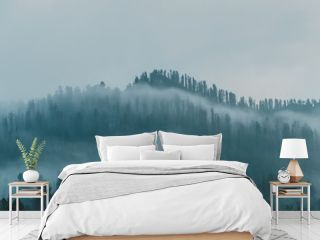 fog over coniferous forest, silhouettes of trees on hillside, mystical haze