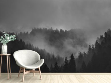 Misty Black and White Monochromatic Mountains with Forest shrouded in fog