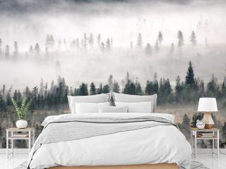 Fog rolling though a Rocky Mountain Valley, Winter Park Colorado