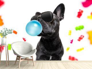 dog eating sweet candies
