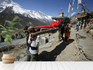 person being rescued in the himalayas, annapurna, nepal