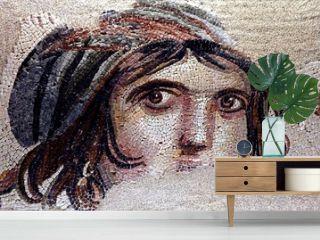 zeugma mosaics, turkey