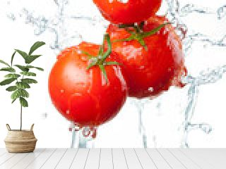 Three Fresh red Tomatoes in splash of water Isolated on white ba