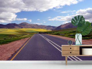 Endless Road Rural Landscape South Africa