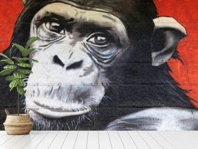 chimpanzé graffiti mono simio 0527f
