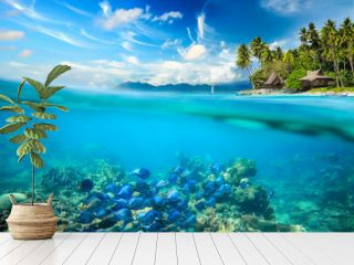 Coral reef, colorful fish