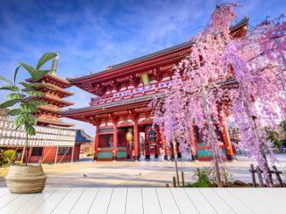 Sensoji Temple in Asakusa, Tokyo, Japan