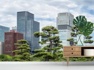 Skyscrapers and japanese garden in Tokyo Japan