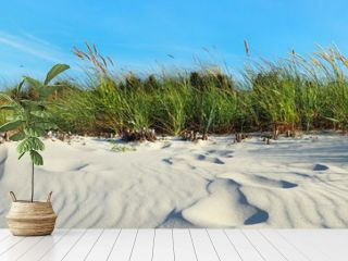 Ostsee Urlaub - Strand Dünen Panorama