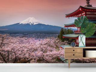 Chureito Pagoda with sakura & Beautiful Mt.fuji View