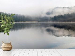 Foggy Landscape. Misty landscape of Lake Saint Anne.