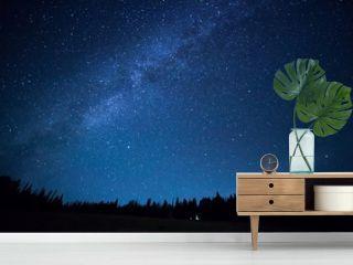 Blue dark night sky with many stars above field of trees. Milkyw