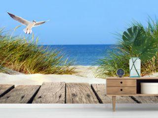 Ostseestrand mit Holzsteg, Dünen und Möwe