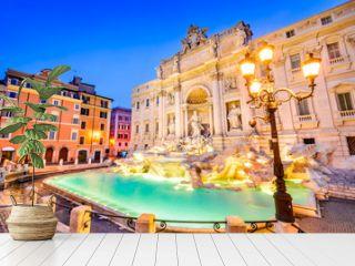Rome, Italy - Fontana di Trevi, night image