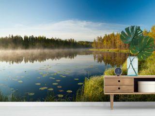 Serene morning at forest pond