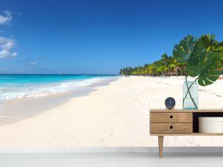 Isla Saona tropical beach panorama
