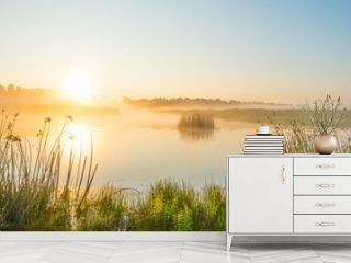 Shore of a misty lake at sunrise in summer