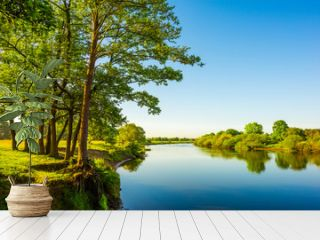 Beautiful landscape with river, trees and meadows