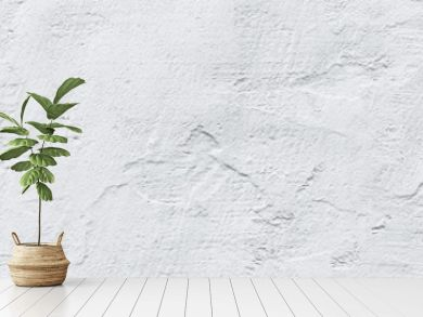 header panorama white textured concrete