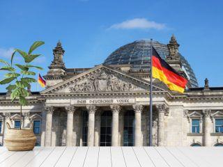 German Flag Waving Bundestag Berlin Germany