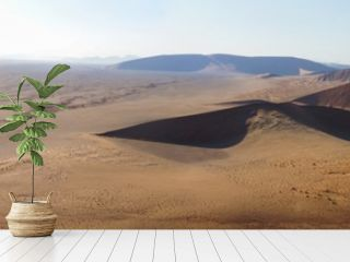 Wüsten Panorama in Namibia