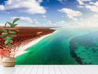 aerial australia beach and turquoise reef